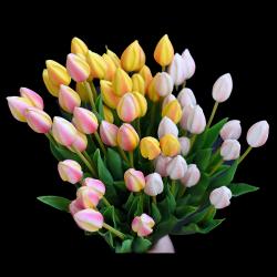 Tulipan ŻÓŁTY - 1szt.