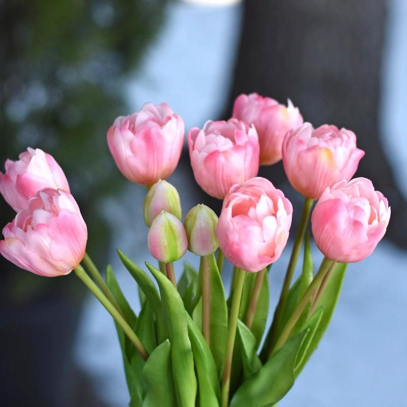 Bukiet tulipanów x 7 -...