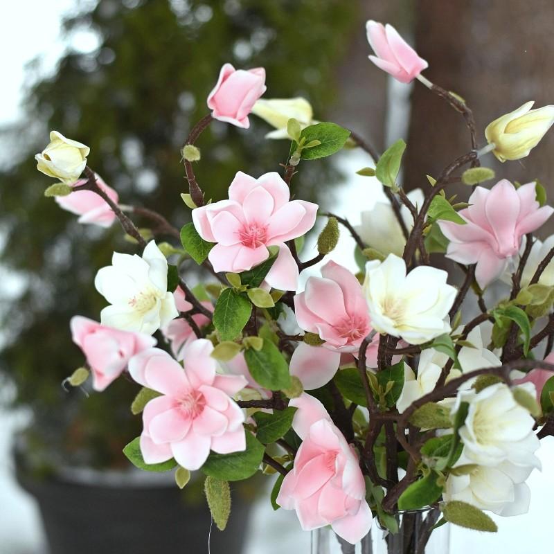 Magnolia gumowa BIEL/KREM 55cm