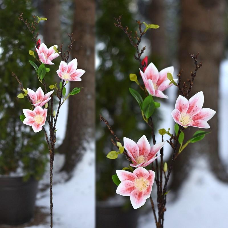 Magnolia gumowa RÓŻ 88cm